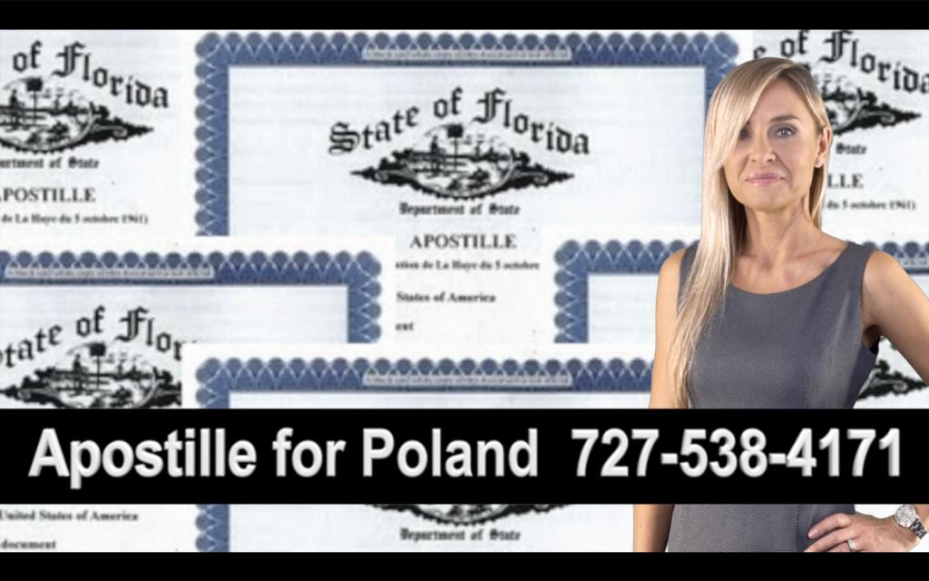 Spring Hill Apostille, Notary, Polish, Polski, Notariusz, Pełnomocnictwo, Power of Attorney, Agnieszka Piasecka, Aga Piasecka
