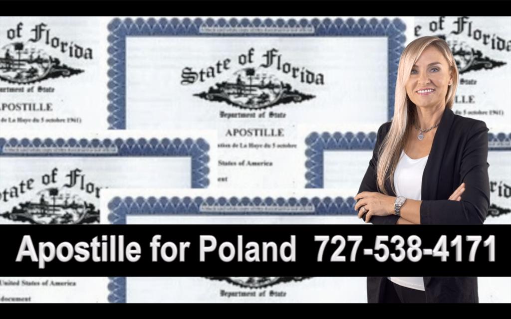 Hillsborough County Apostille, Notary, Polish, Polski, Notariusz, Pełnomocnictwo, Power of Attorney, Agnieszka Piasecka, Aga Piasecka