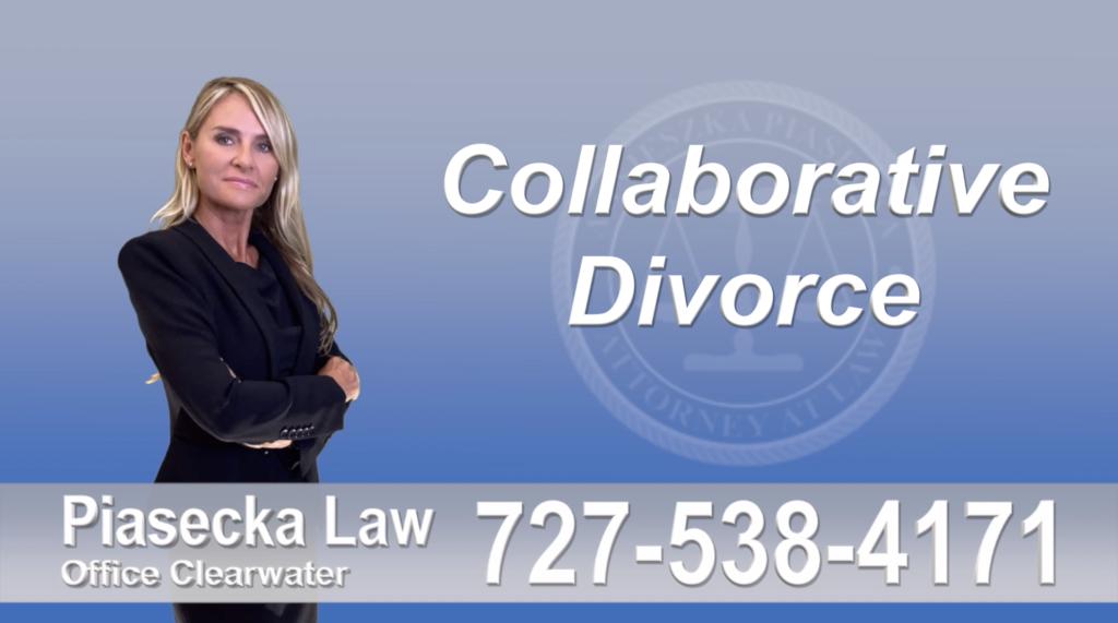 Sand Key Collaborative, Attorney, Agnieszka, Piasecka, Prawnik, Rozwodowy, Rozwód, Adwokat, Najlepszy, Best, Attorney, Divorce, Family, Lawyer