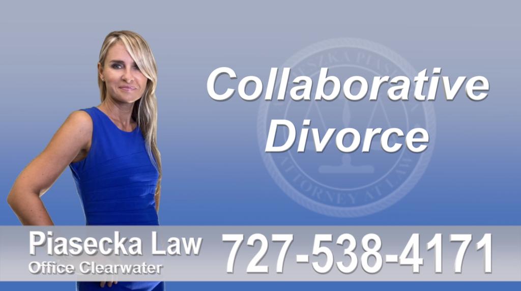 Seminole Collaborative, Attorney, Agnieszka, Piasecka, Prawnik, Rozwodowy, Rozwód, Adwokat, Najlepszy, Best Attorney, Divorce, Lawyer