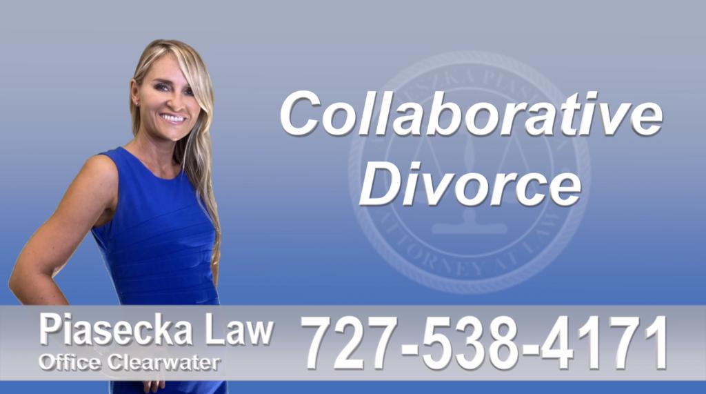 Thonotosassa Collaborative, Attorney, Agnieszka, Piasecka, Prawnik, Rozwodowy, Rozwód, Adwokat, Najlepszy, Best, Attorney, Divorce Lawyer