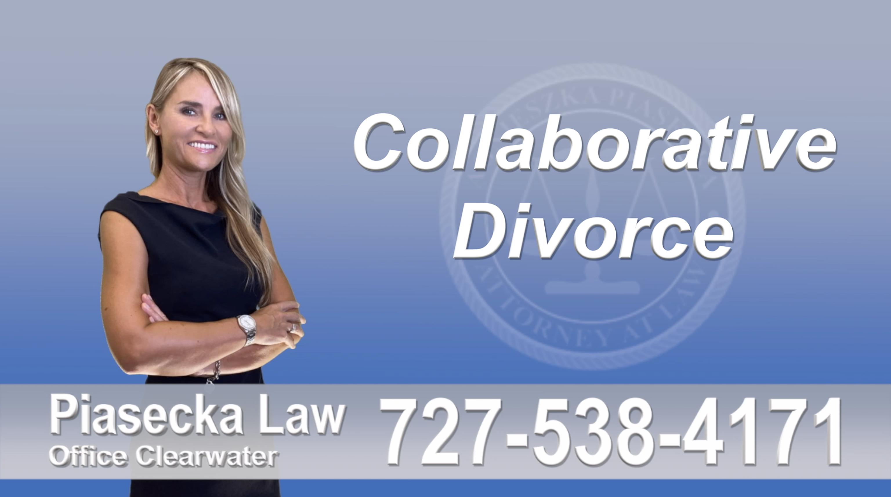 Pinellas County Collaborative, Attorney, Agnieszka, Piasecka, Prawnik, Rozwodowy, Rozwód, Adwokat, Najlepszy, Best, Divorce, Lawyer