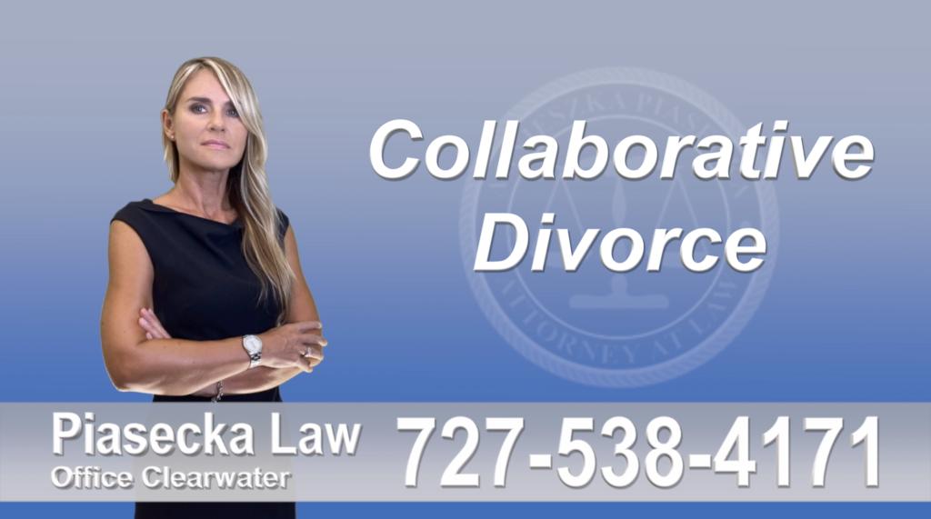 Safety Harbor Collaborative, Attorney, Piasecka, Prawnik, Rozwodowy, Rozwód, Adwokat, Najlepszy, Best, Attorney, Divorce, Lawyer