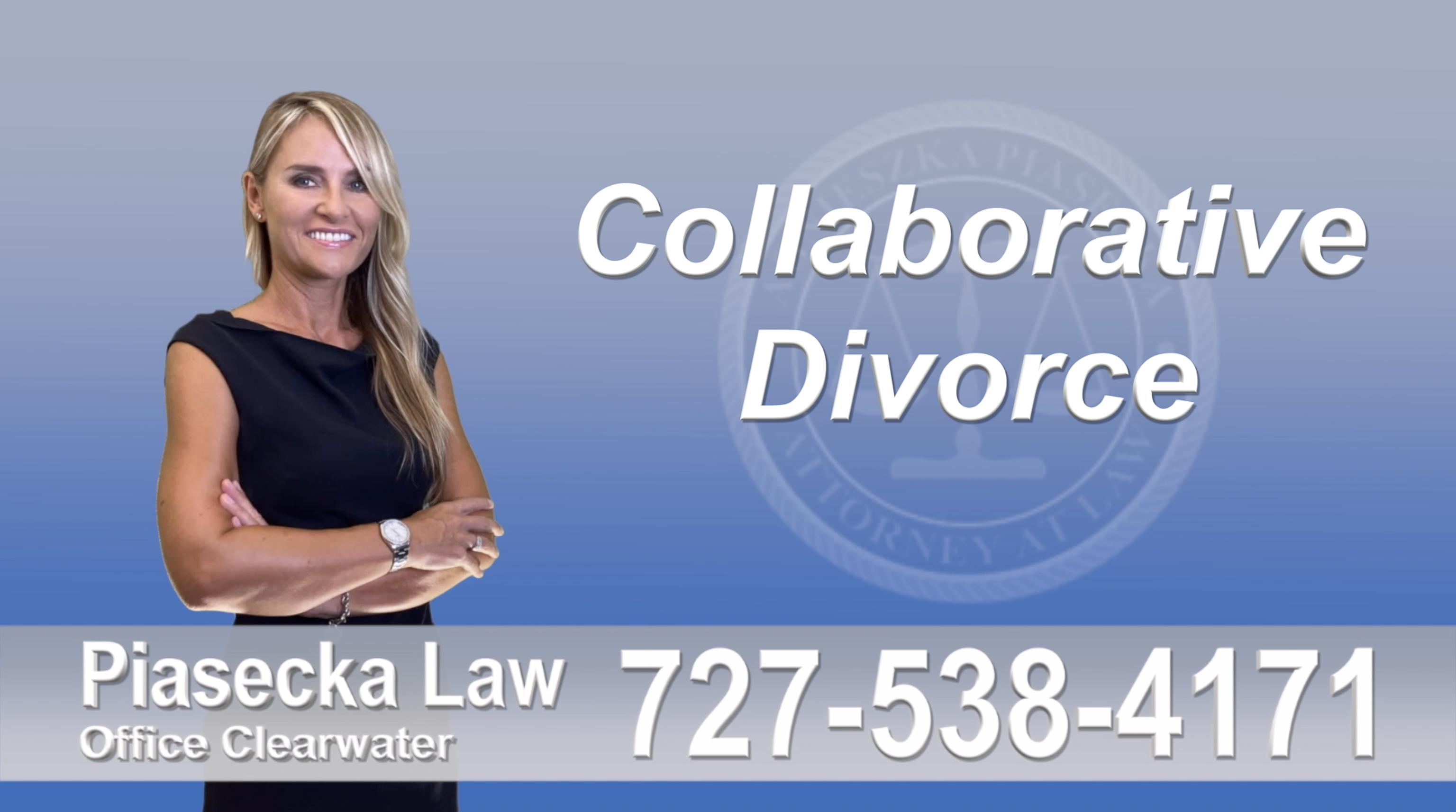 Lithia, Collaborative, Divorce, Attorney, Agnieszka, Piasecka, Prawnik, Rozwodowy, Rozwód, Adwokat, Najlepszy