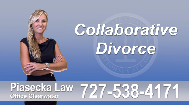 Fort Myers Collaborative, Divorce, Attorney, Agnieszka, Piasecka, Prawnik, Rozwodowy, Rozwód, Adwokat, Najlepszy, Best