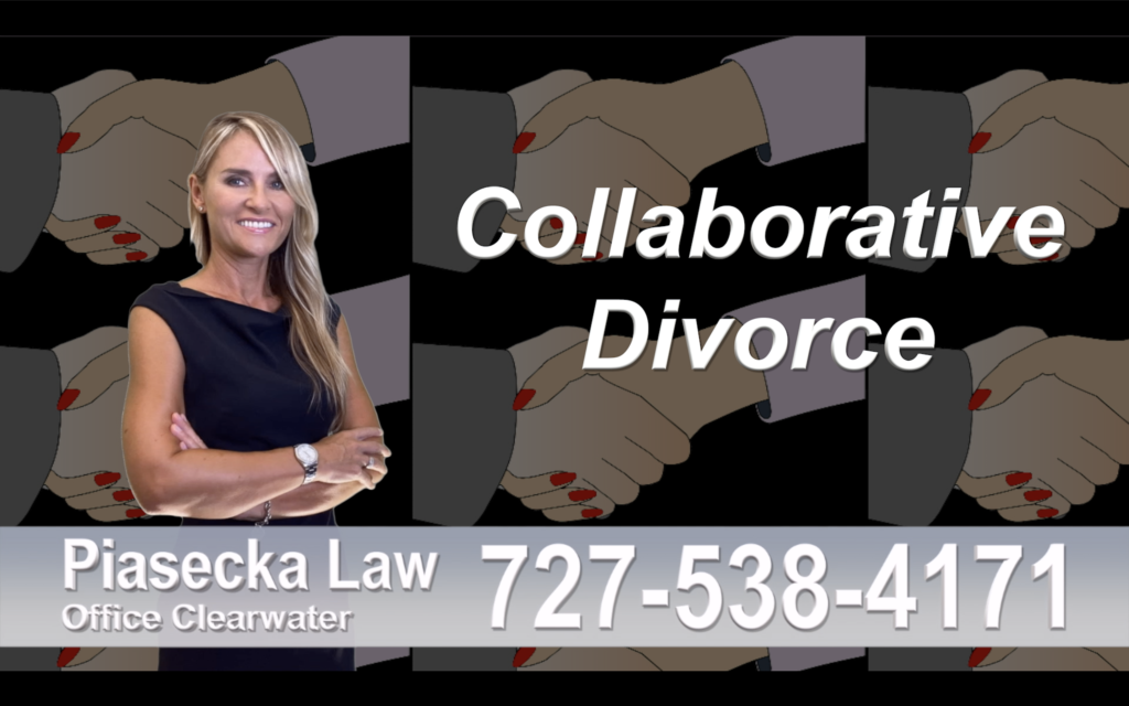 Nokomis Collaborative, Divorce, Attorney, Agnieszka, Piasecka, Prawnik, Rozwodowy, Rozwód, Adwokat, Najlepszy, Best attorney, divorce