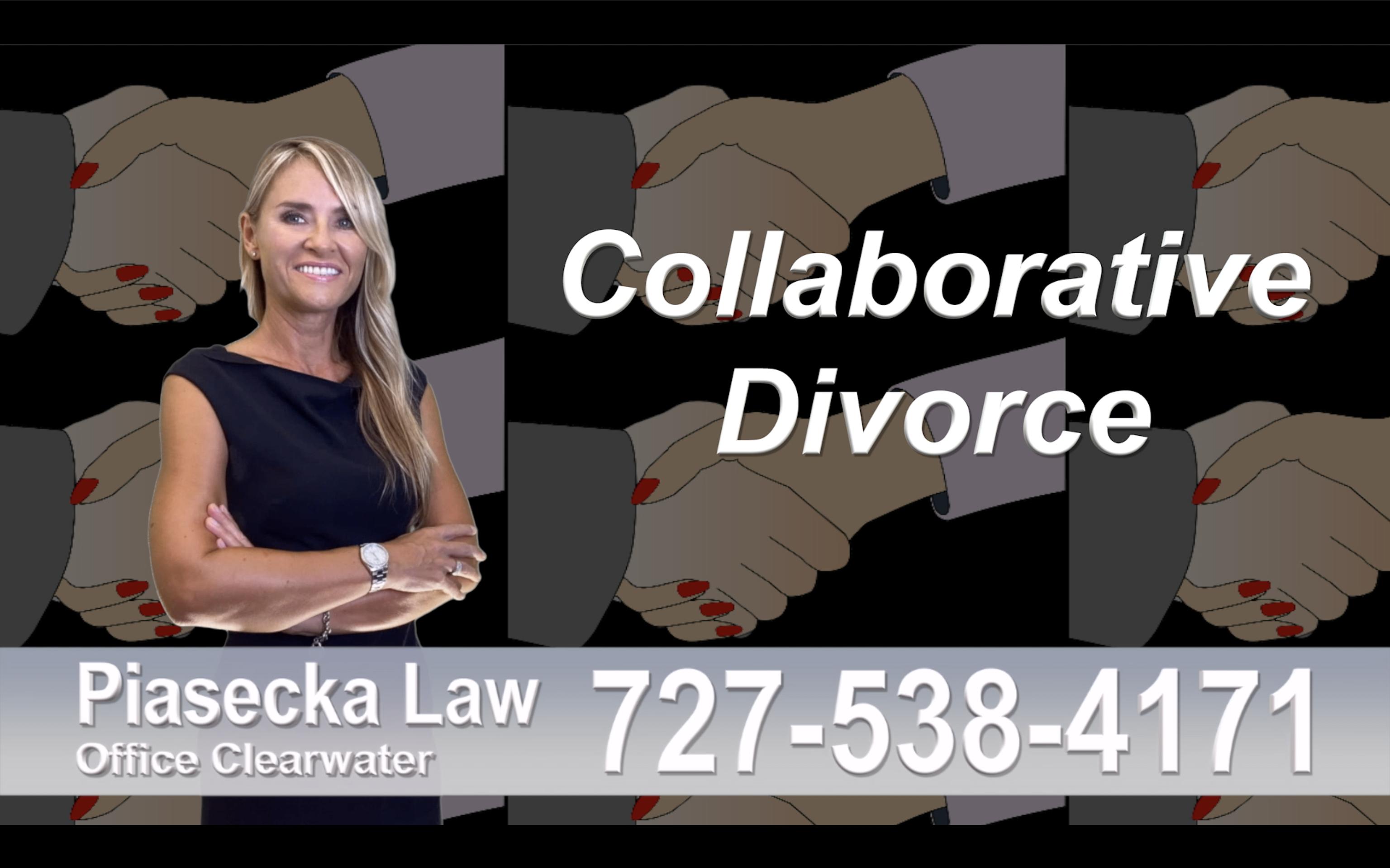 Naples Collaborative, Divorce, Attorney, Agnieszka, Piasecka, Prawnik, Rozwodowy, Rozwód, Adwokat, Najlepszy, Best, divorce, attorney