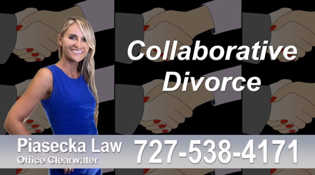 St. Pete Beach Collaborative, Divorce, Attorney, Agnieszka, Piasecka, Prawnik, Rozwodowy, Rozwód, Adwokat rozwodowy, Najlepszy Best