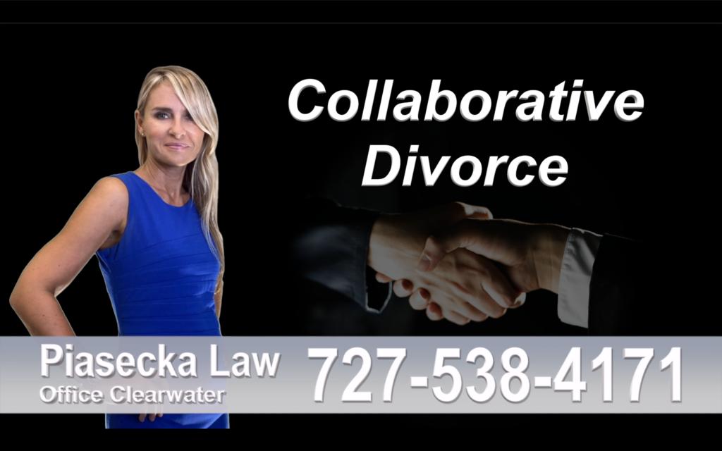 Hernando County Collaborative, Divorce, Attorney, Agnieszka, Piasecka, Prawnik, Rozwodowy, Rozwód, Adwokat, rozwodowy, Najlepszy, Best, Collaborative, Divorce, Attorney
