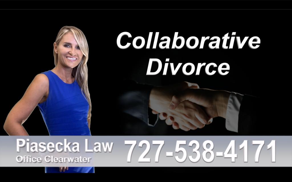 Valrico Collaborative, Divorce, Attorney, Agnieszka, Piasecka, Prawnik, Rozwodowy, Rozwód, Adwokat, rozwodowy, Najlepszy, Best, Collaborative, Divorce, Attorneys