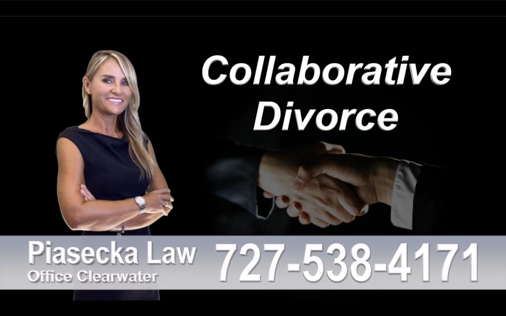 Belleair Bluffs Collaborative, Divorce, Attorney, Agnieszka, Piasecka, Prawnik, Rozwodowy, Rozwód, Adwokat, rozwodowy, Najlepszy, Best Lawyer