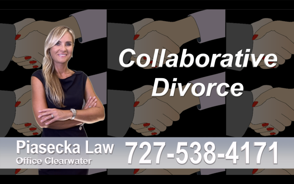 Bay Pines Collaborative, Divorce, Attorney, Agnieszka, Piasecka, Prawnik, Rozwodowy, Rozwód, Adwokat, rozwodowy, Najlepszy Best Lawyers