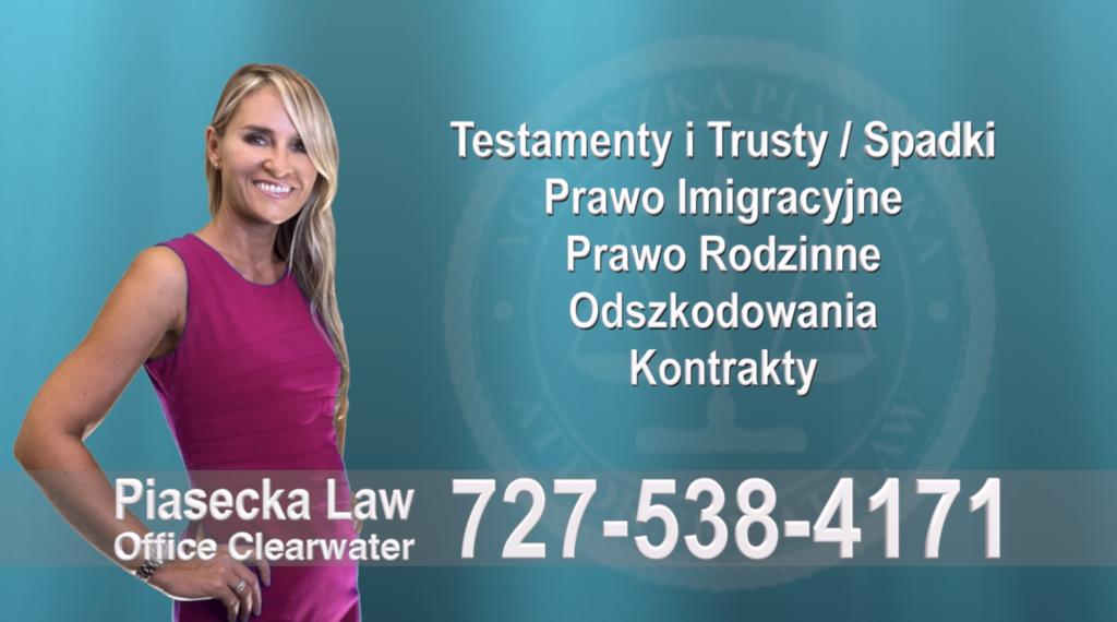Valrico Polski, Adwokat, Prawnik, Clearwater, Florida, Agnieszka, Aga, Piasecka
