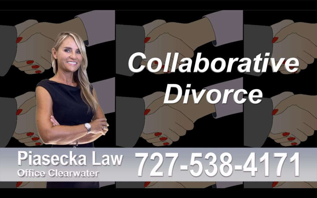 Sarasota Collaborative, Divorce, Attorney, Agnieszka, Piasecka, Prawnik, Rozwodowy, Rozwód, Adwokat, Najlepszy Best