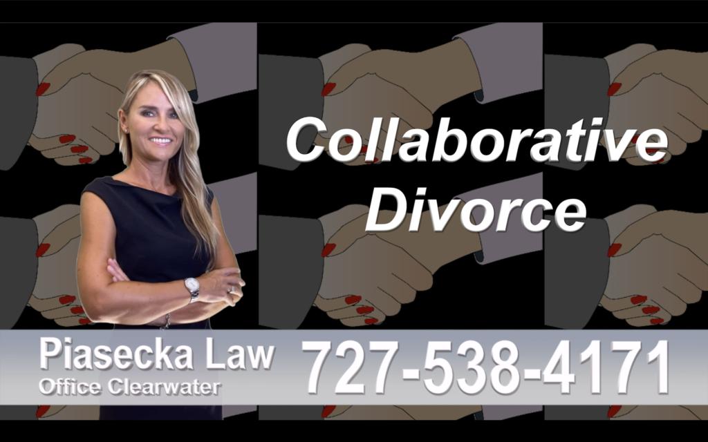 Safety Harbor Collaborative, Divorce, Attorney, Agnieszka, Piasecka, Prawnik, Rozwodowy, Rozwód, Adwokat, Najlepszy, Best attorney, divorce
