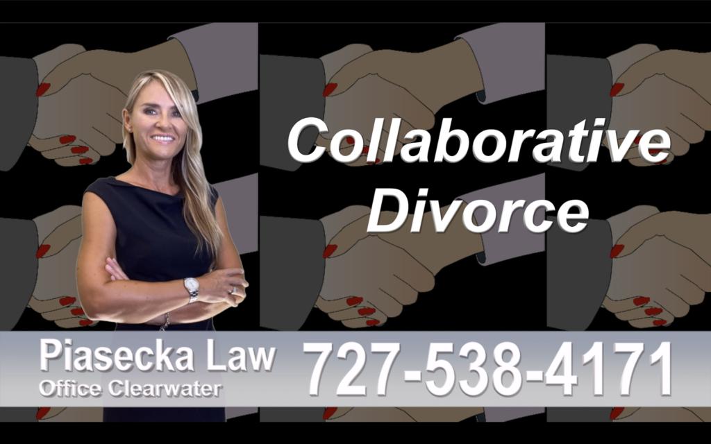 New Port Richey Collaborative, Divorce, Attorney, Agnieszka, Piasecka, Prawnik, Rozwodowy, Rozwód, Adwokat, Najlepszy, Best, divorce, attorney