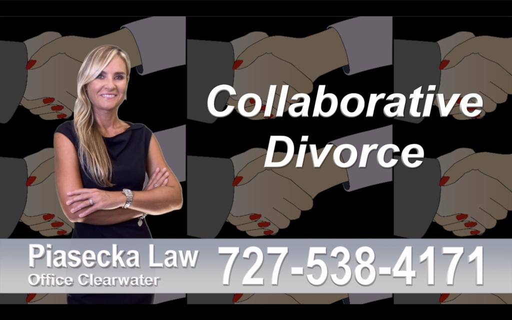 Palm Harbor Collaborative, Divorce, Attorney, Agnieszka, Piasecka, Prawnik, Rozwodowy, Rozwód, Adwokat, rozwodowy, Najlepszy Best Lawyers